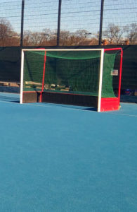 Empty pitch goal - WSC